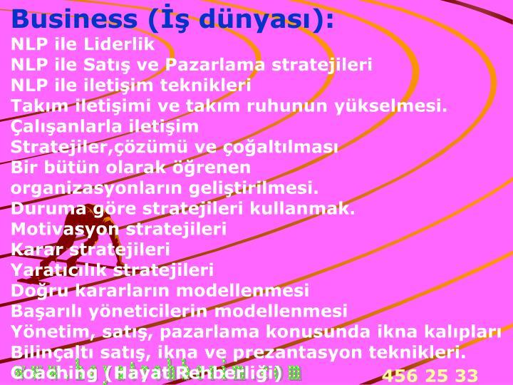 Business (İş dünyası):