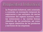 propiedad industrial1