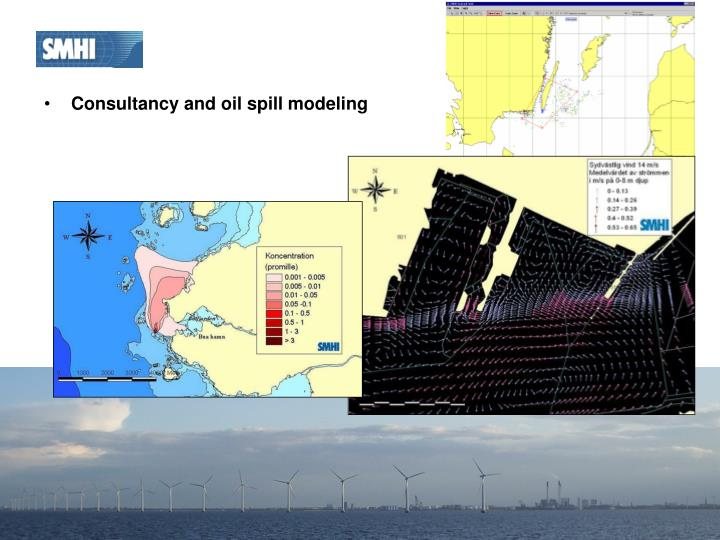 Consultancy and oil spill modeling