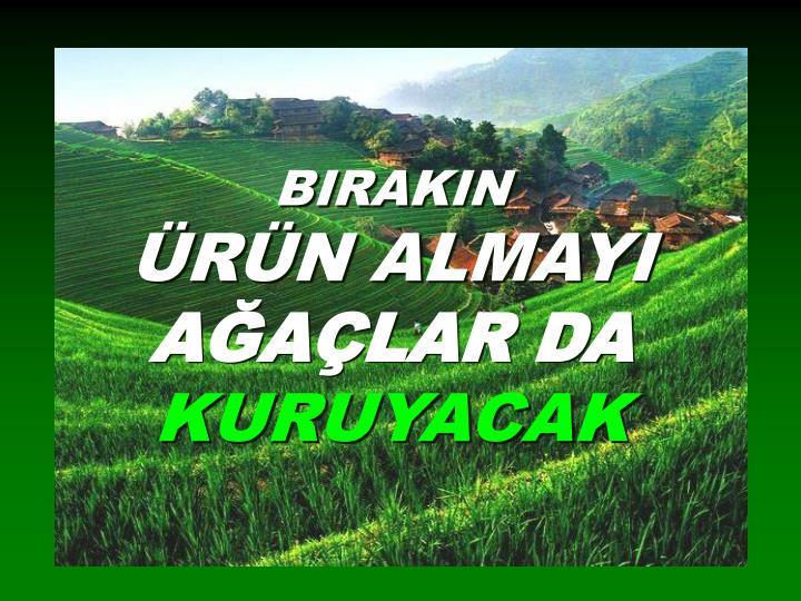 BIRAKIN