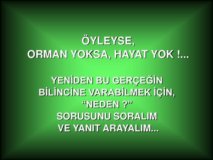 ÖYLEYSE,