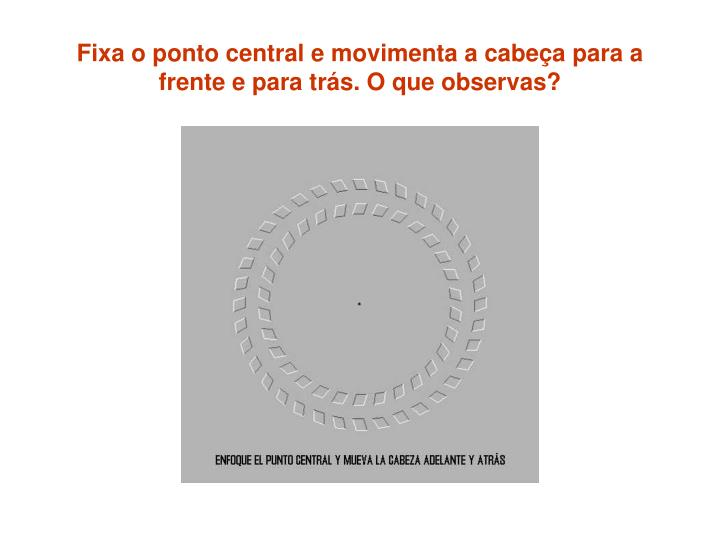 Fixa o ponto central e movimenta a cabeça para a frente e para trás. O que observas?