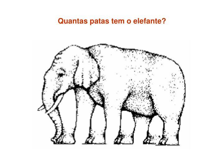Quantas patas tem o elefante?