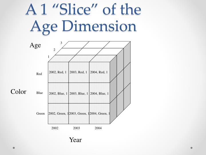 "A 1 ""Slice"" of the Age Dimension"