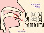 articulation place1