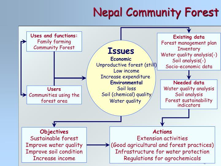 Nepal Community Forest
