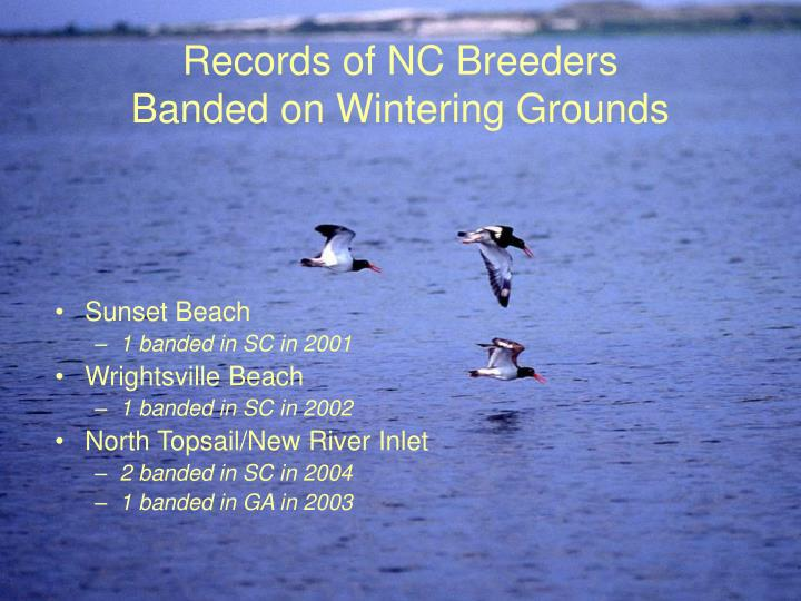 Records of NC Breeders
