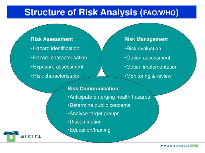Structure of Risk Analysis (
