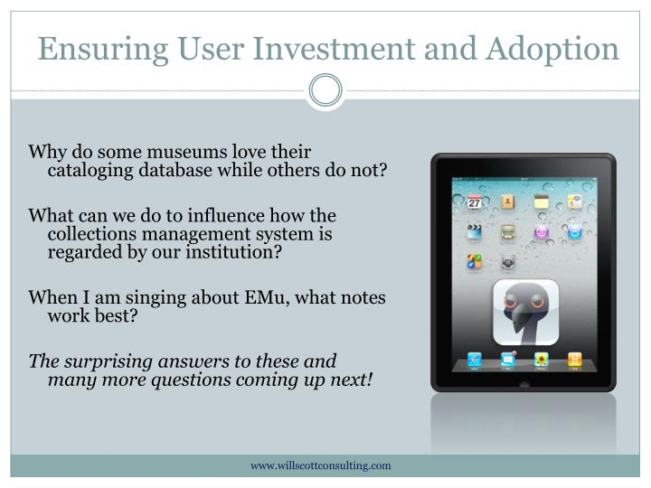 ensuring user investment and adoption n.