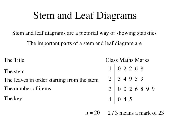 Ppt stem and leaf diagrams powerpoint presentation id5313032 stem and leaf diagrams 1 ccuart Images