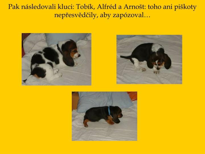 Pak následovali kluci: Tobík, Alfréd a Arnošt: toho ani piškoty nepřesvědčily, aby zapózoval…