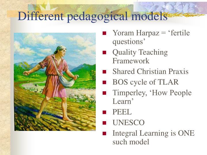 Different pedagogical models