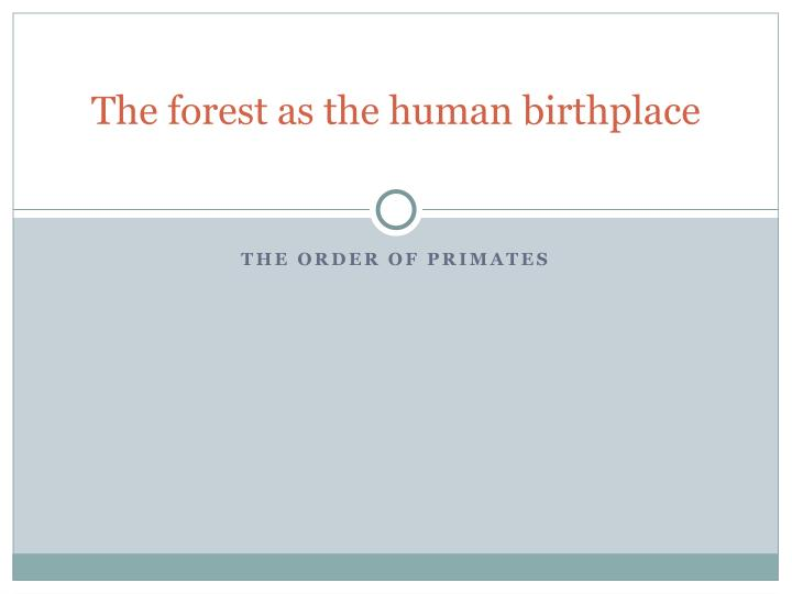 the forest as the human birthplace n.