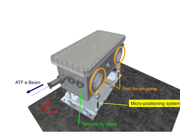 Port for ion pump