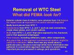removal of wtc steel what did fema look for1