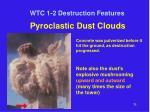 wtc 1 2 destruction features14