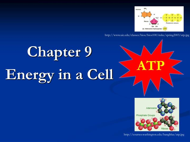 Ppt Chapter 9 Energy In A Cell