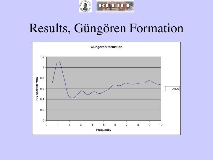 Results, Güngören Formation