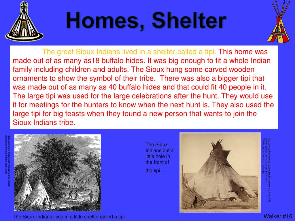 PPT - Sioux Indians PowerPoint Presentation - ID:5316164