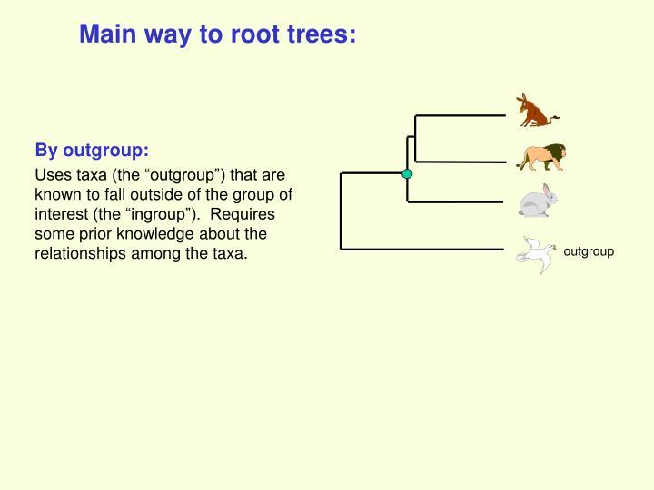 Main way to root trees: