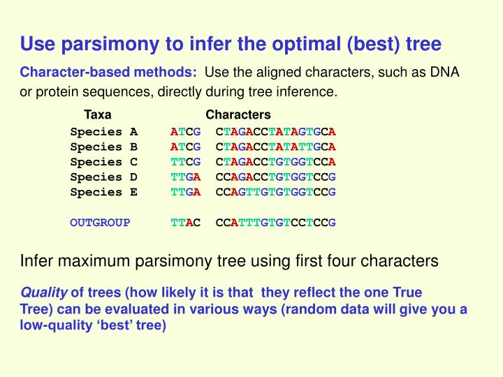 Use parsimony to infer the optimal (best) tree