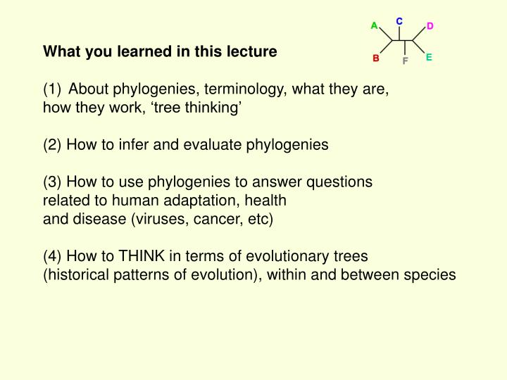 What you learned in this lecture