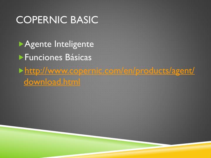 Copernic Basic