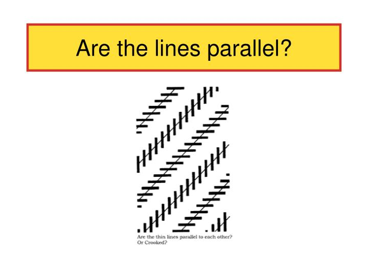 Are the lines parallel?