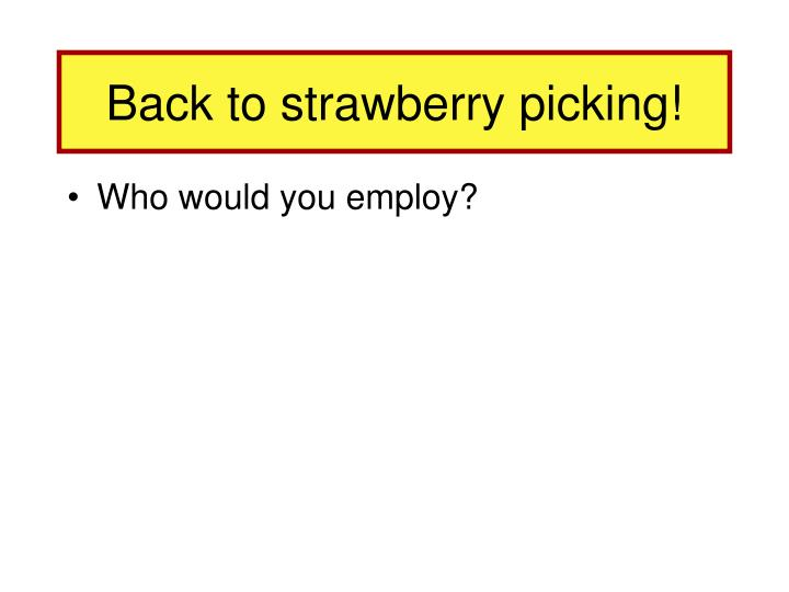 Back to strawberry picking!