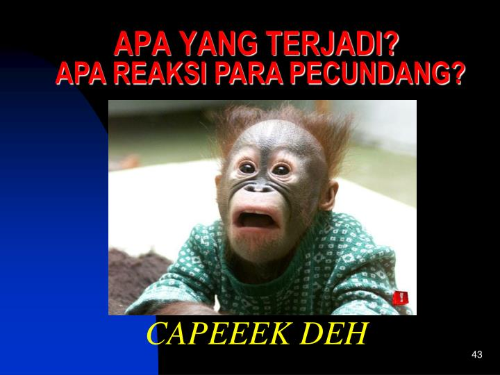 CAPEEEK DEH