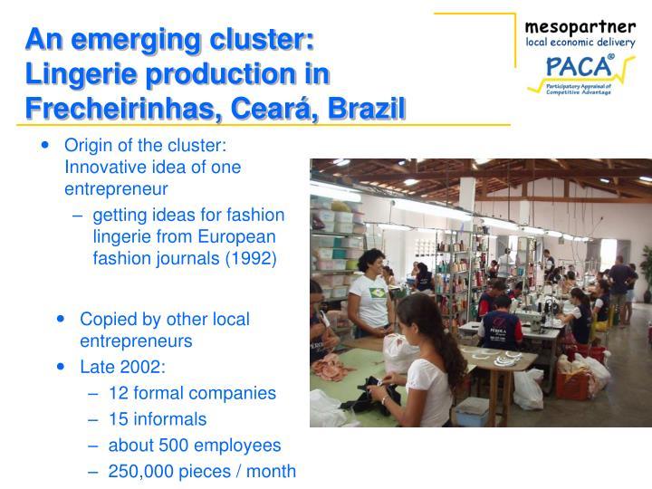 Origin of the cluster: Innovative idea of one entrepreneur