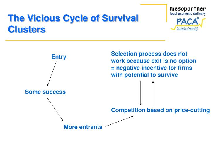 The Vicious Cycle of Survival Clusters