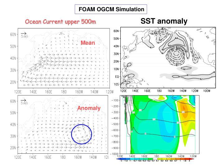 FOAM OGCM Simulation