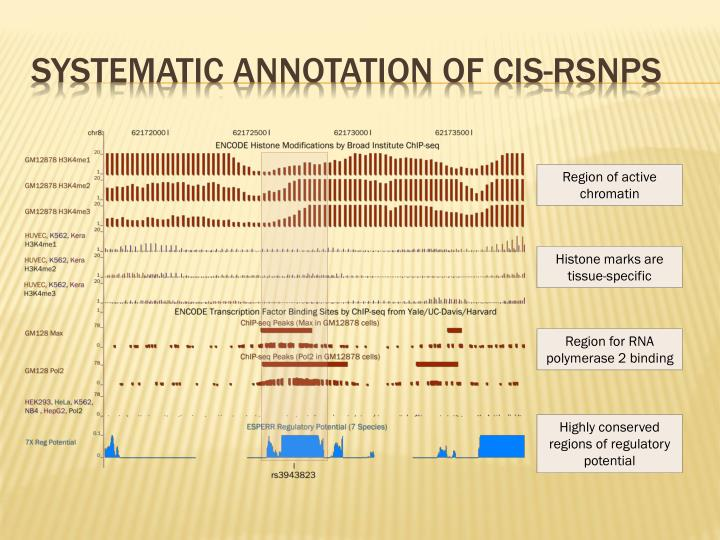 Systematic annotation of