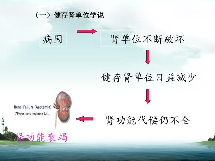 (一)健存肾单位学说