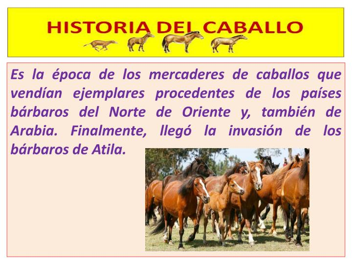 Es la época de los mercaderes de caballos que vendían ejemplares procedentes de los países bárbaros del Norte de Oriente y, también de Arabia. Finalmente, llegó la invasión de los bárbaros de Atila.