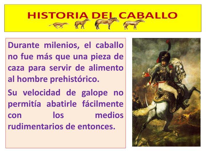 Durante milenios, el caballo no fue más que una pieza de caza para servir de alimento al hombre pre...