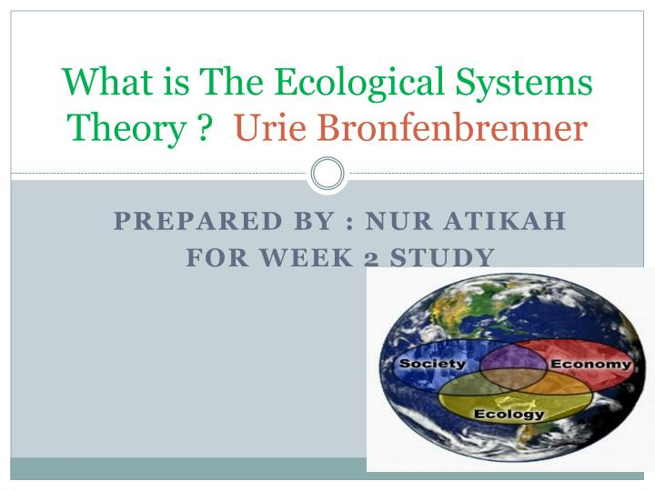 bronfenbrenners ecological systems theory