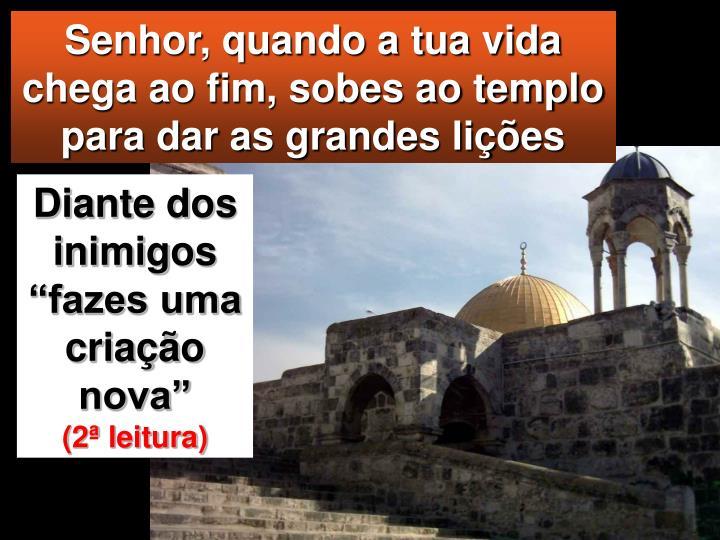 Senhor, quando a tua vida chega ao fim, sobes ao templo para dar as grandes lições