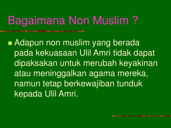 Bagaimana Non Muslim ?