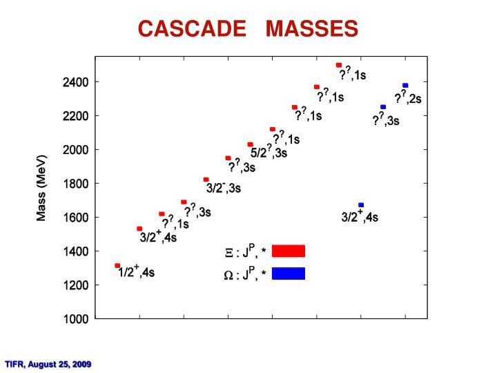 CASCADE   MASSES