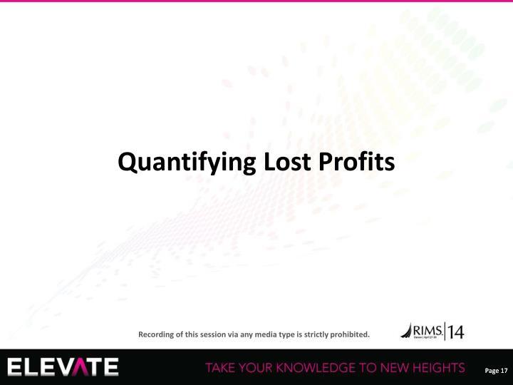 Quantifying Lost Profits