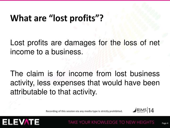 """What are """"lost profits""""?"""