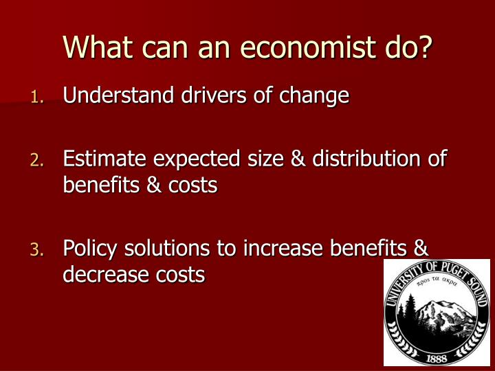 What can an economist do
