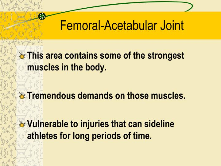 Femoral acetabular joint