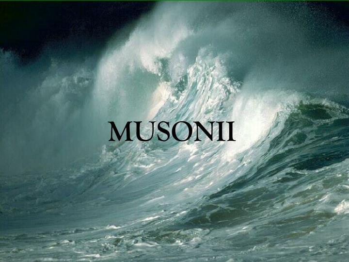 MUSONII