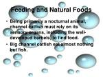 feeding and natural foods1