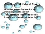 feeding and natural foods8