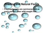 feeding and natural foods9