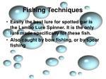 fishing techniques3